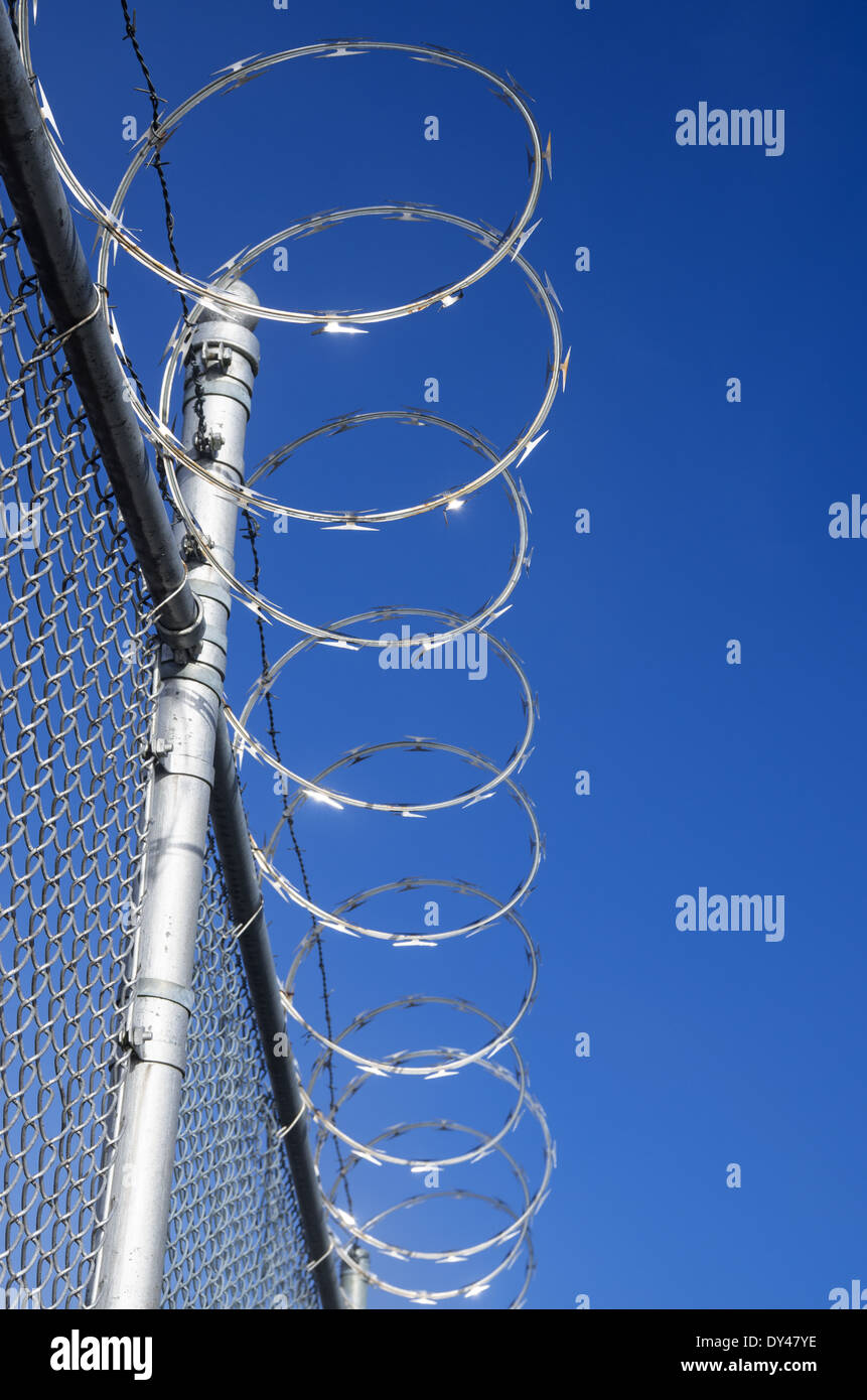 razor wire topped metal mesh fence with blue sky - Stock Image
