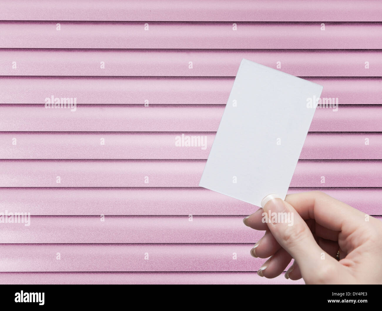 Female hand holding a blank business card stock photo 68332267 alamy female hand holding a blank business card reheart Gallery