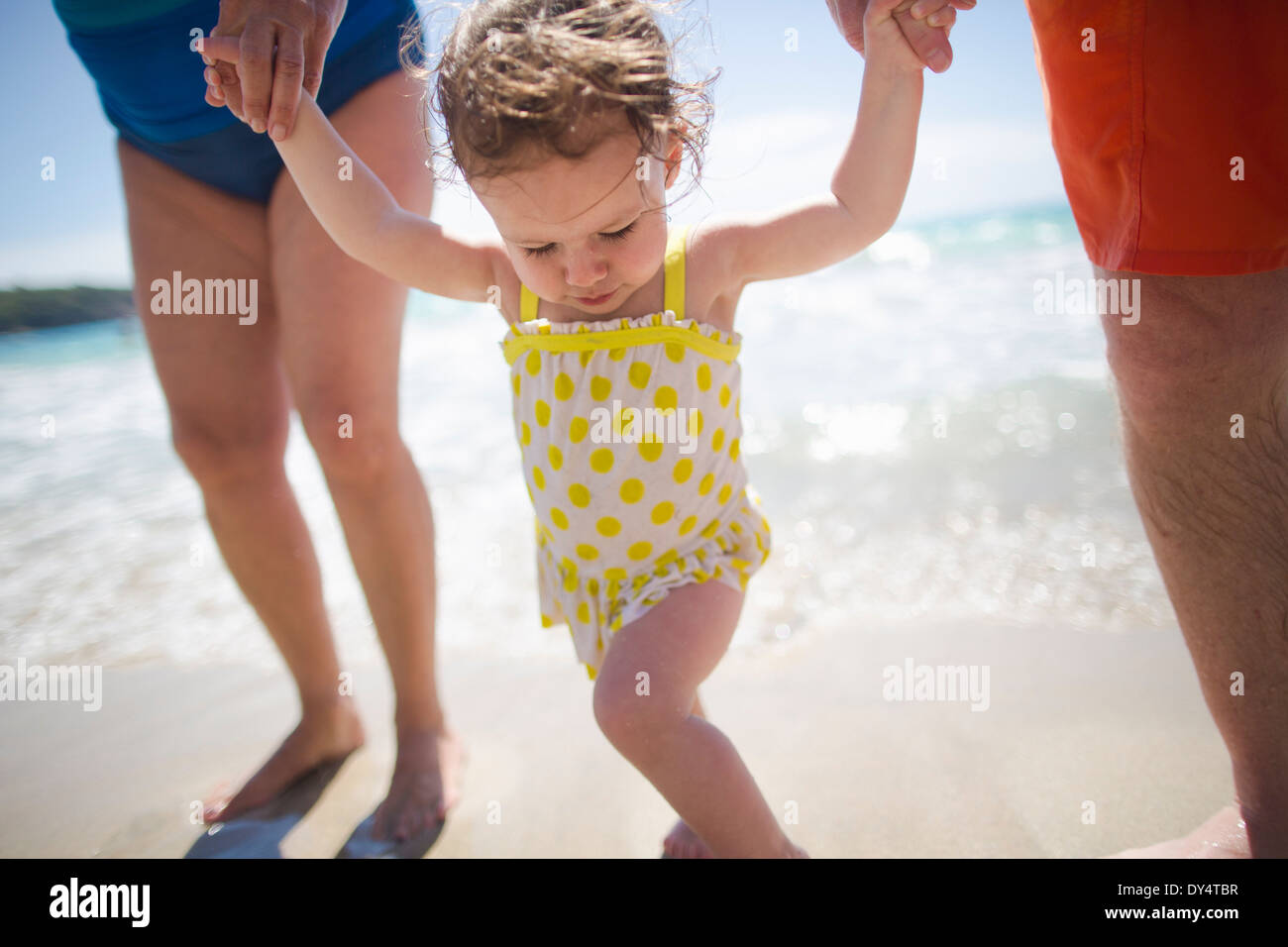 Toddler and grandparents holding hands, walking on beach - Stock Image