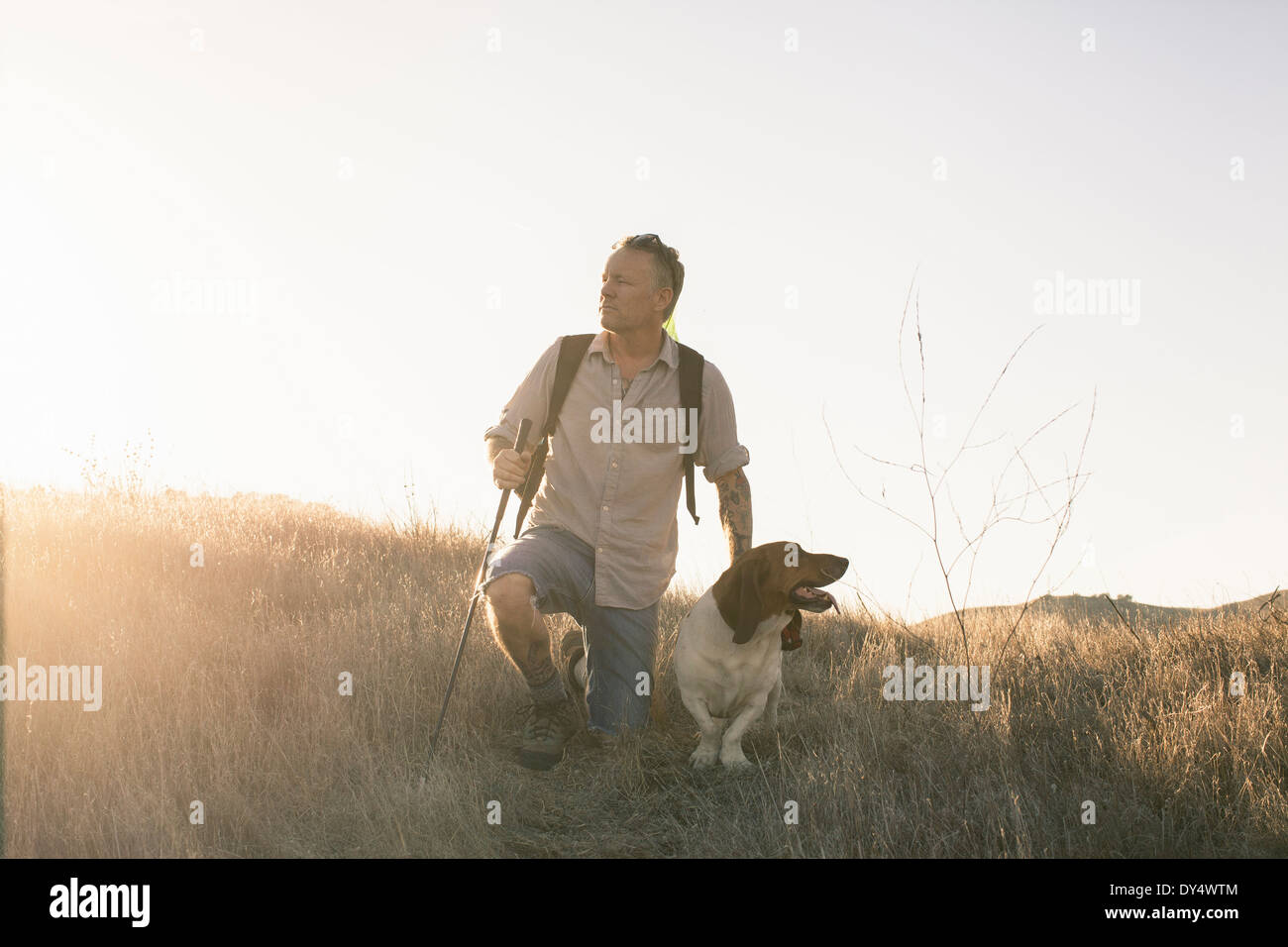 Mature man and his basset hound taking a break from hiking in Santa Monica Mountains, California, USA - Stock Image