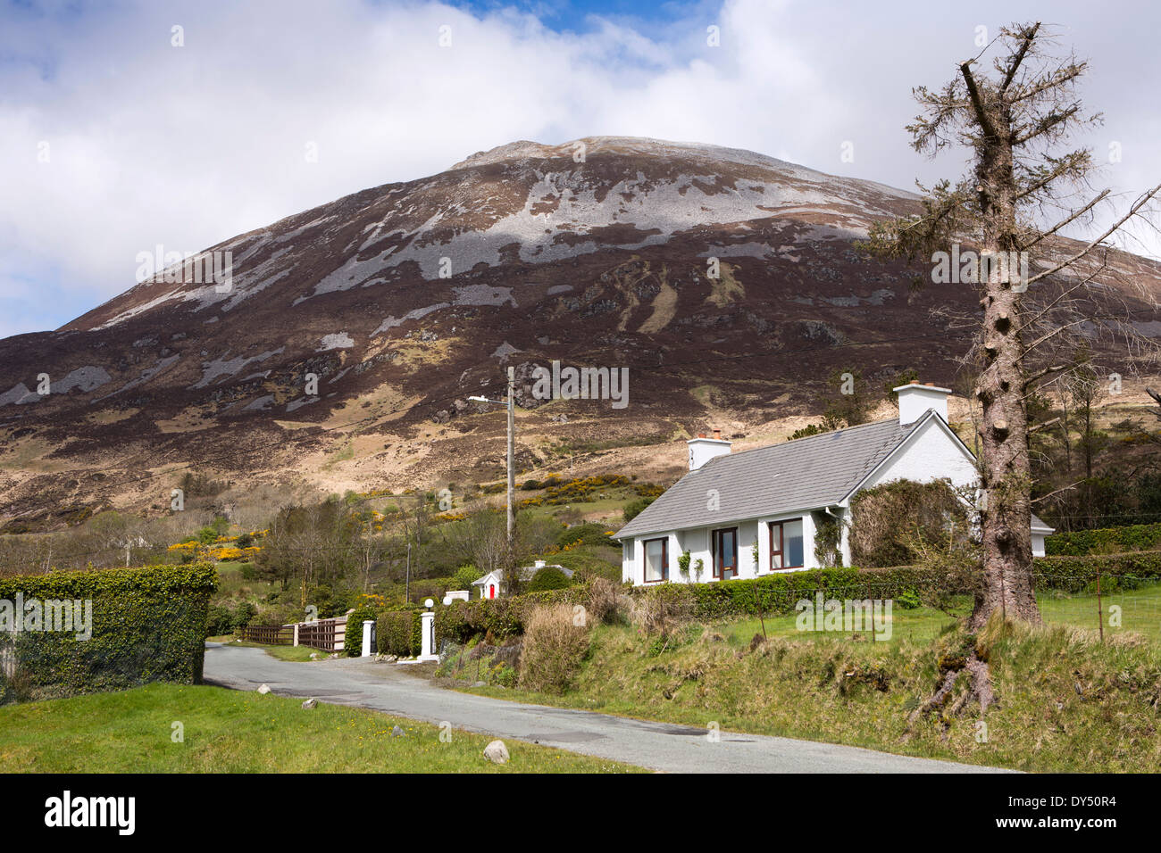 Ireland, Co Donegal, Dunlewey, cottage below Mount Errigal, Ireland's second highest Mountain - Stock Image