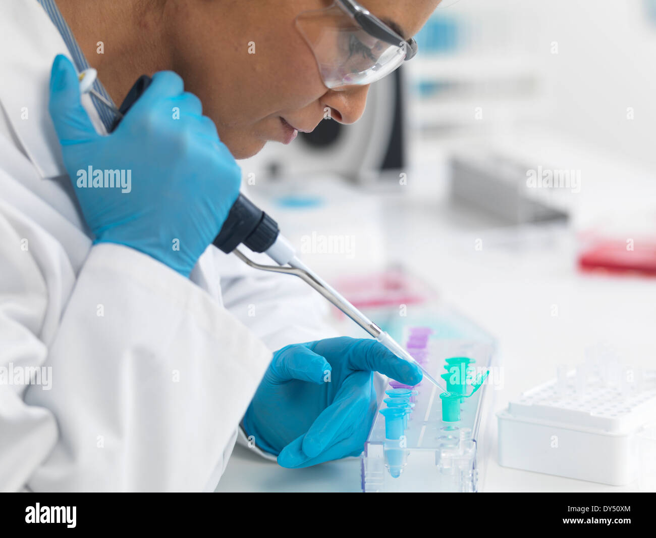 Female scientist pipetting DNA samples for testing Stock Photo
