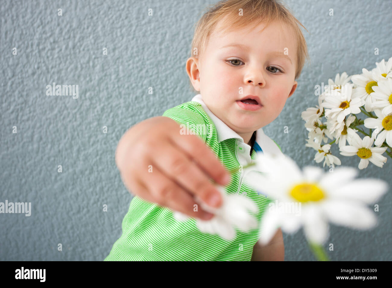 Baby boy playing with flowers - Stock Image