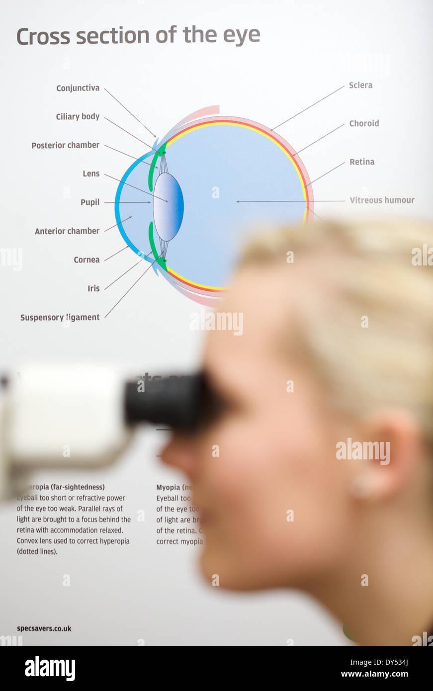 eye test at optician - Stock Image
