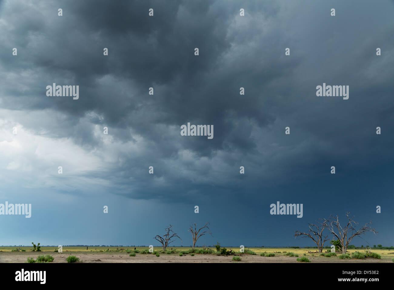 Storm clouds over landscape, Kasane, Chobe National Park, Botswana, Africa - Stock Image