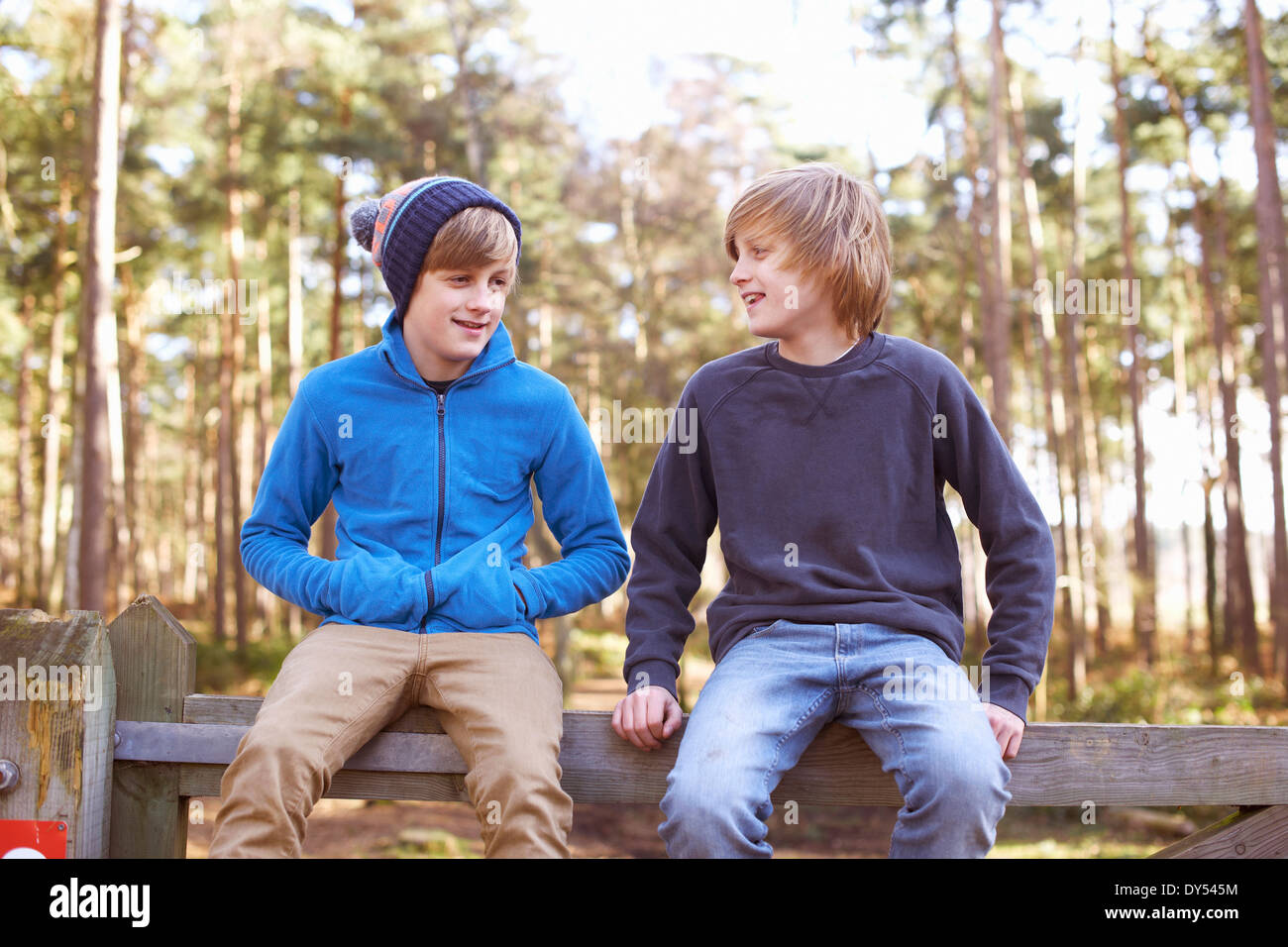 Twin brothers sitting on gate in forest Stock Photo