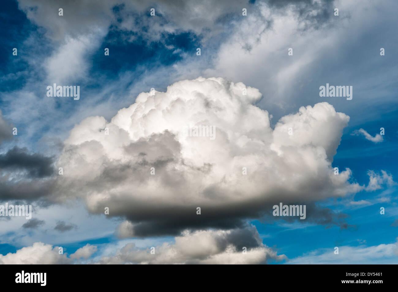 Cumulus cloud, UK - Stock Image