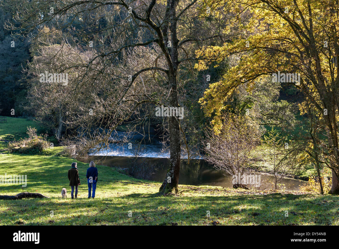 Two women going for an autumn walk near Stansbatch, Herefordshire, UK. - Stock Image