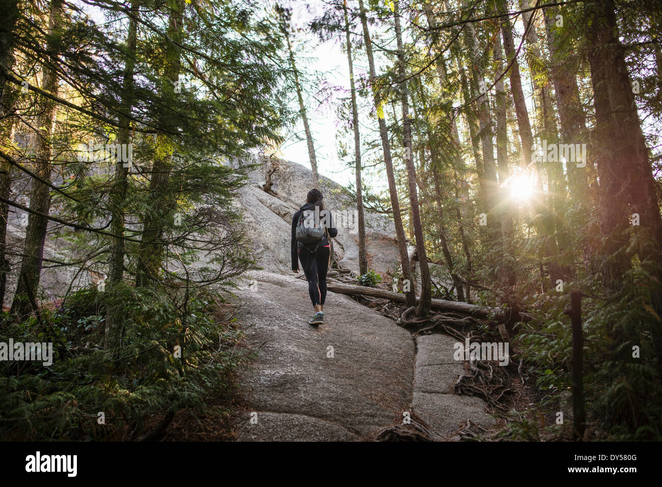 Young woman walking through forest, Squamish, British Columbia, Canada Stock Photo