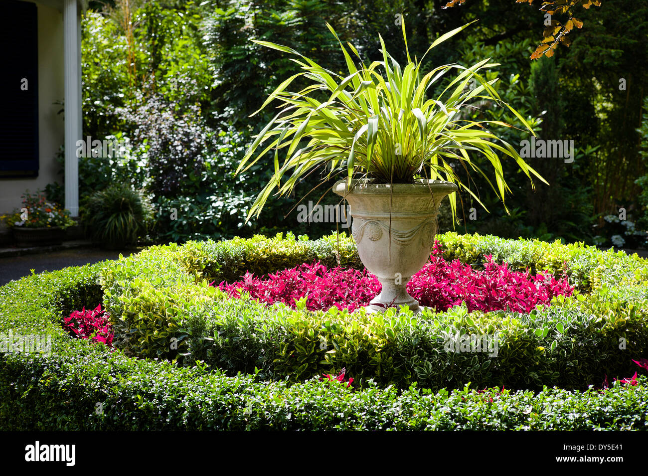 Concentric hedging and planting in a Channel Islands garden UK - Stock Image