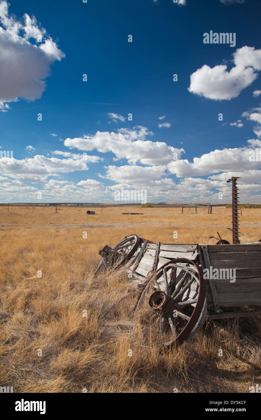 USA, South Dakota, Cactus Flat, Prairie Homestead, old wagon - Stock Image