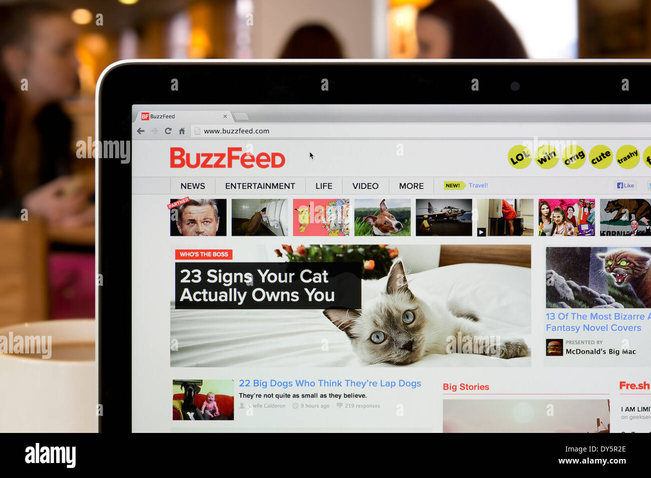 The BuzzFeed Website Shot In A Coffee Shop Environment Editorial Use Only Print