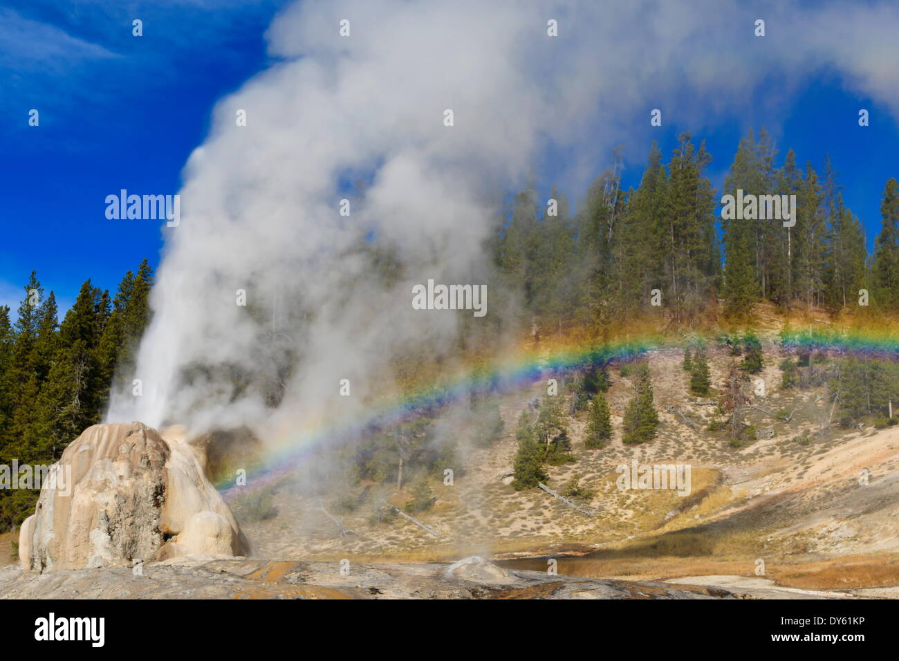 Lone Star Geyser erupts and creates rainbow, Yellowstone National Park, UNESCO Site, Wyoming, USA - Stock Image