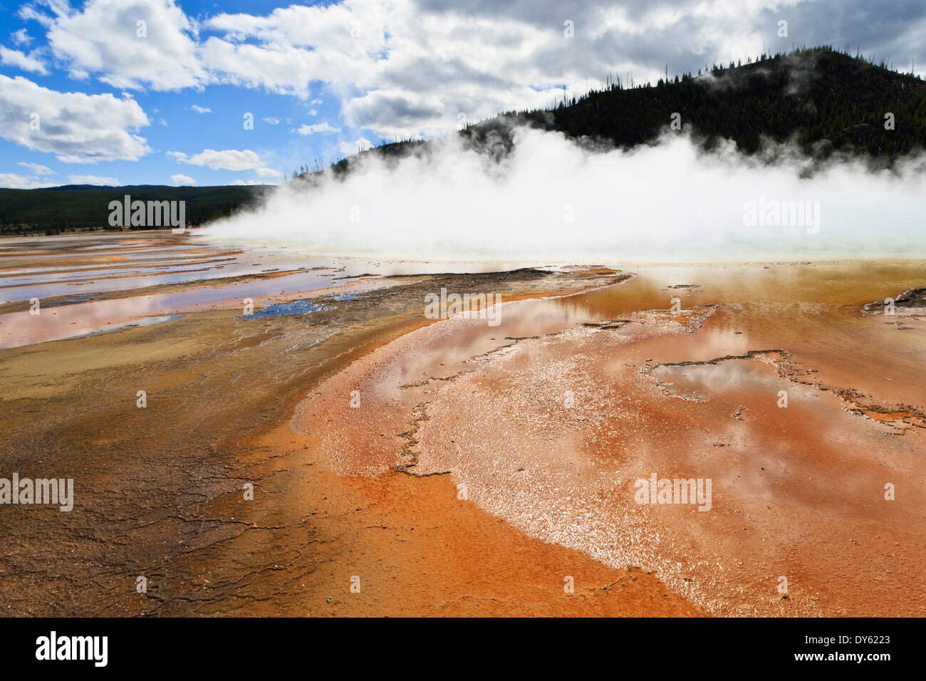 Bright colours and steam, Grand Prismatic Spring, Yellowstone National Park, UNESCO Site, Wyoming, USA - Stock Image