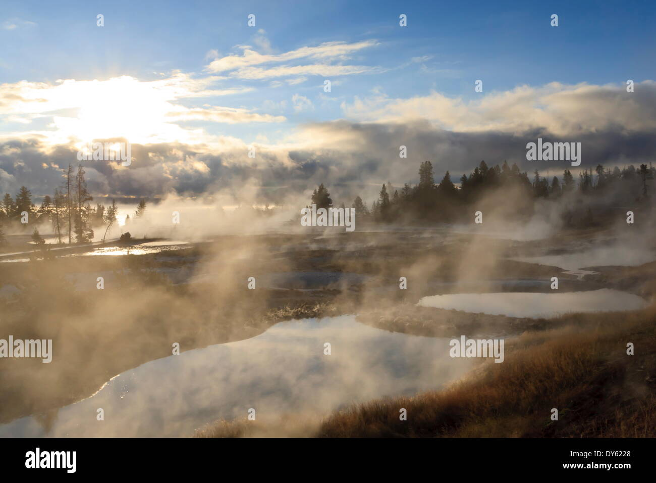 Freezing mists, dawn, West Thumb Geyser Basin, Yellowstone National Park, UNESCO Site, Wyoming, USA - Stock Image