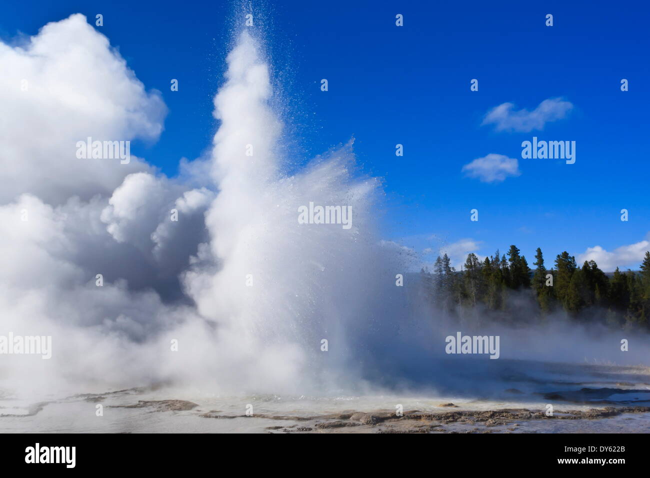 Sawmill Geyser erupts, Upper Geyser Basin, Yellowstone National Park, UNESCO Site, Wyoming, USA - Stock Image