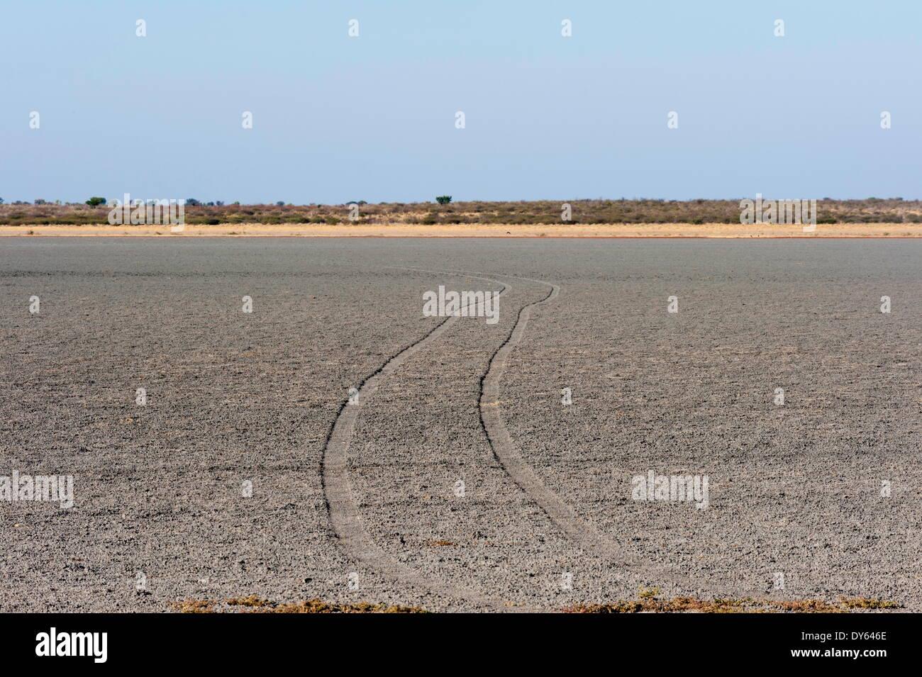 Central Kalahari National Park, Botswana, Africa - Stock Image