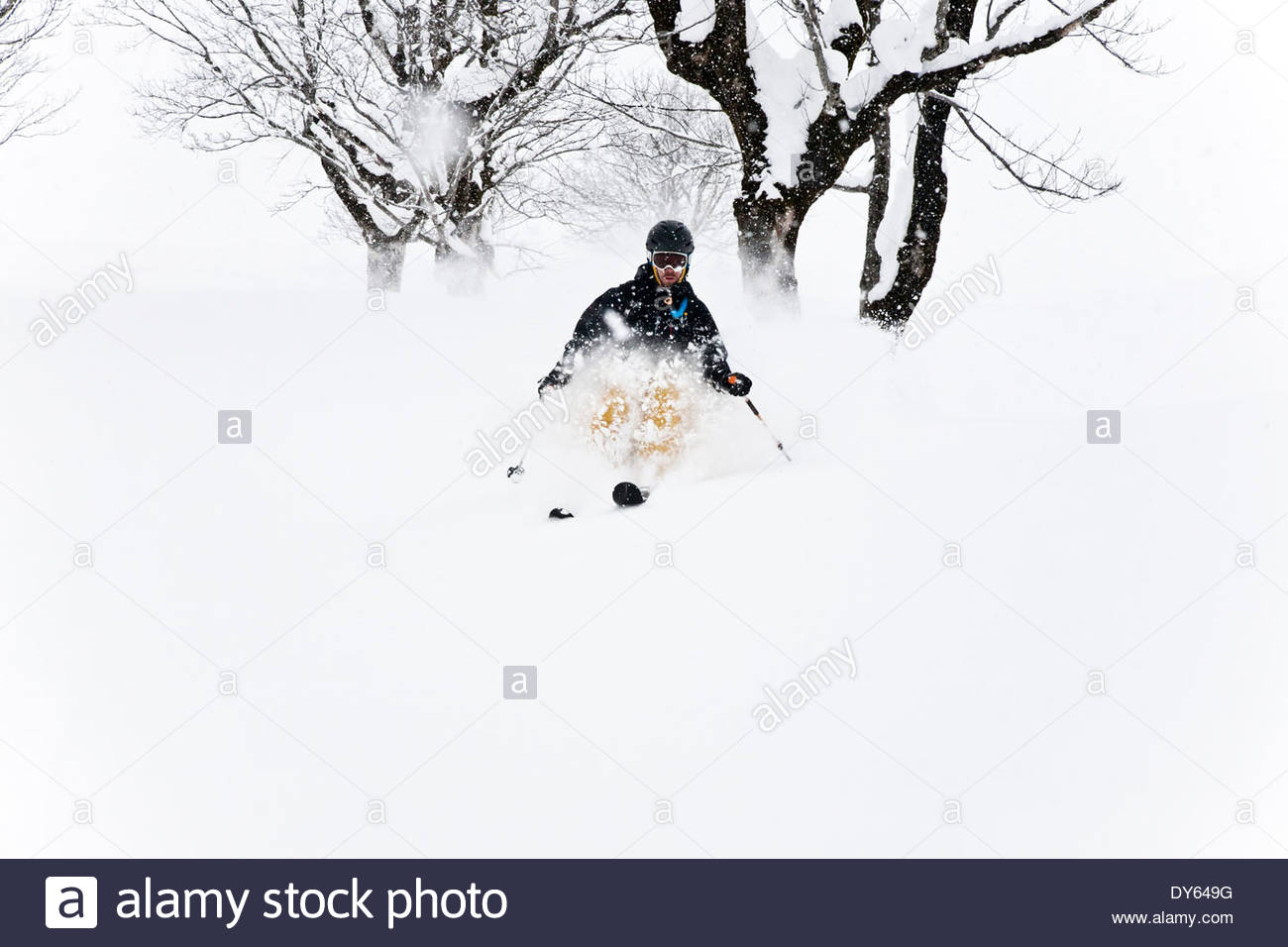 Man downhill skiing, Laliderer Scharte, Risstal, Tyrol, Austria Stock Photo