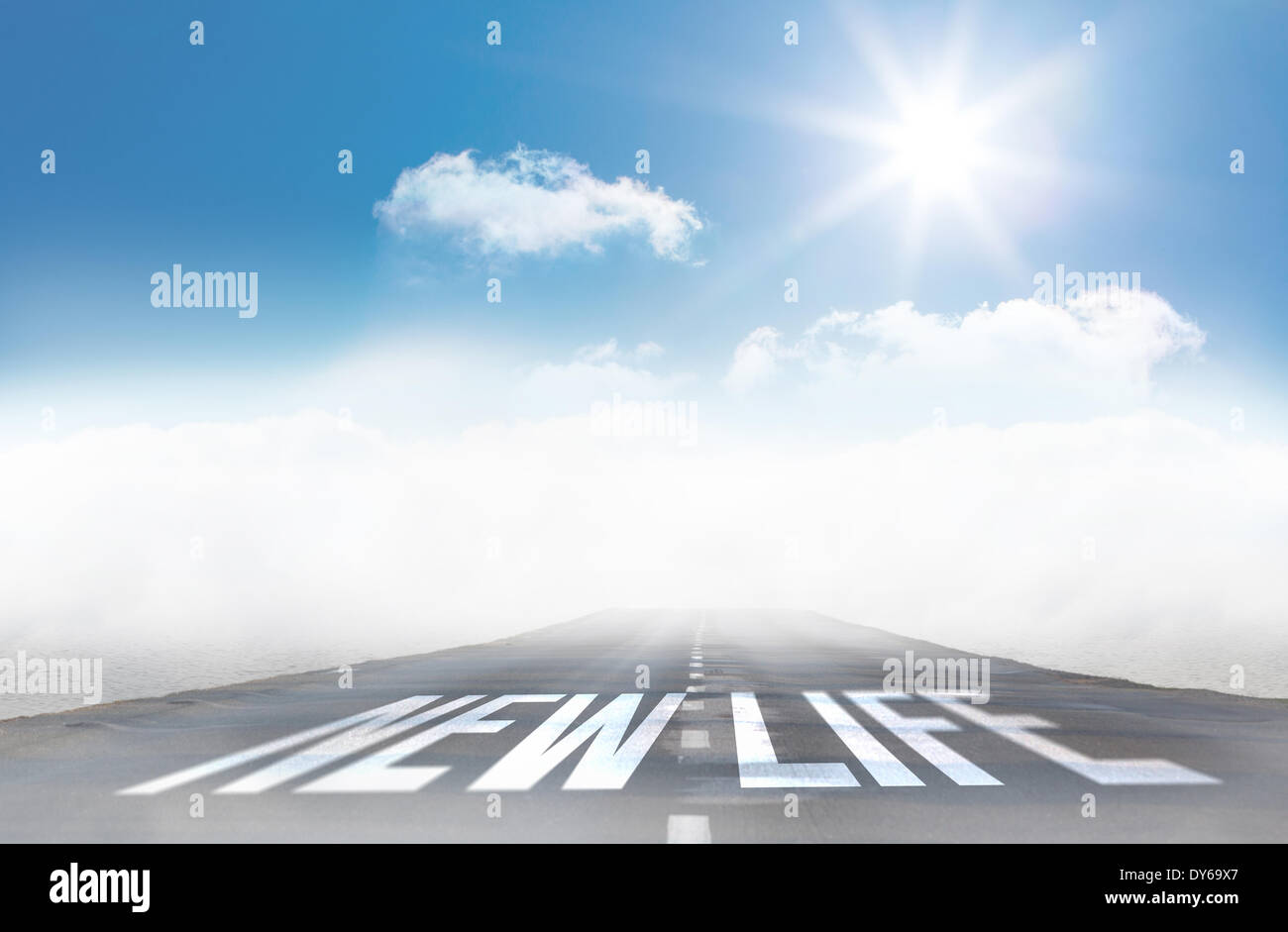 New life against open road - Stock Image