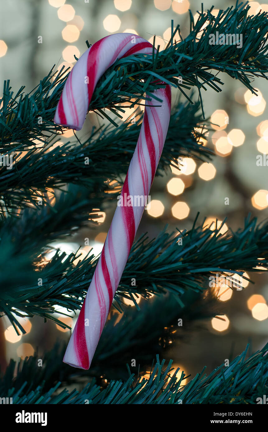 a candy cane hangs on a christmas tree with lights out of focus in the background - Candy Cane Christmas Tree