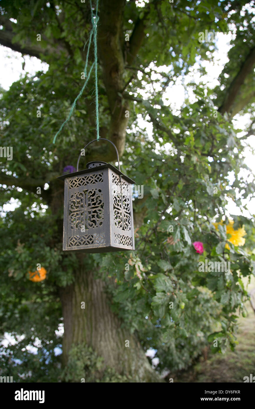 Decorative Metal Lantern Hanging From Leafy Oak Tree As A Wedding Stock Photo Alamy