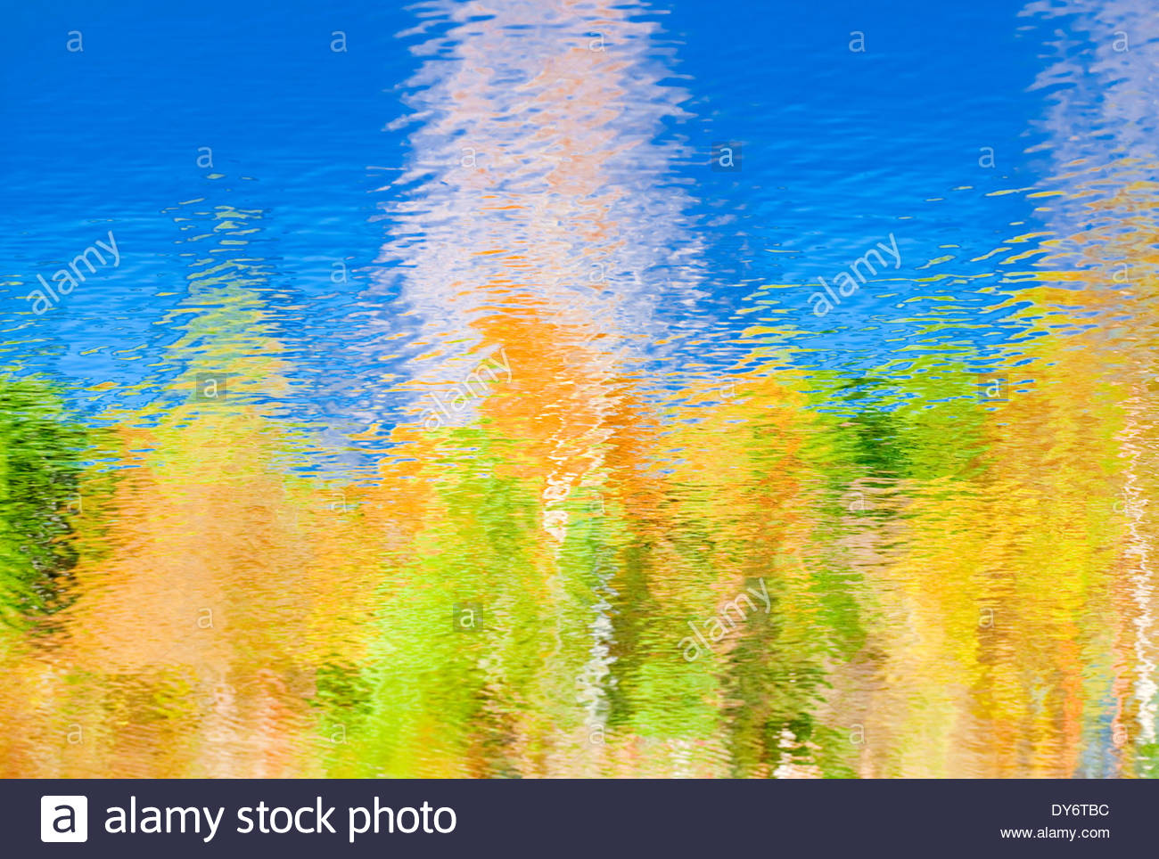 Reflections - Stock Image