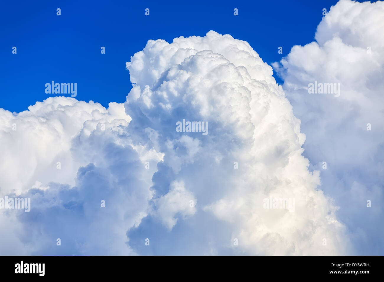 Cumulus cloud formation, close up - Stock Image