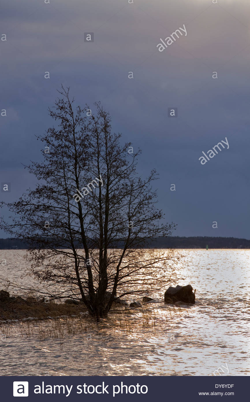 Dark New Year's day in Turku - Stock Image