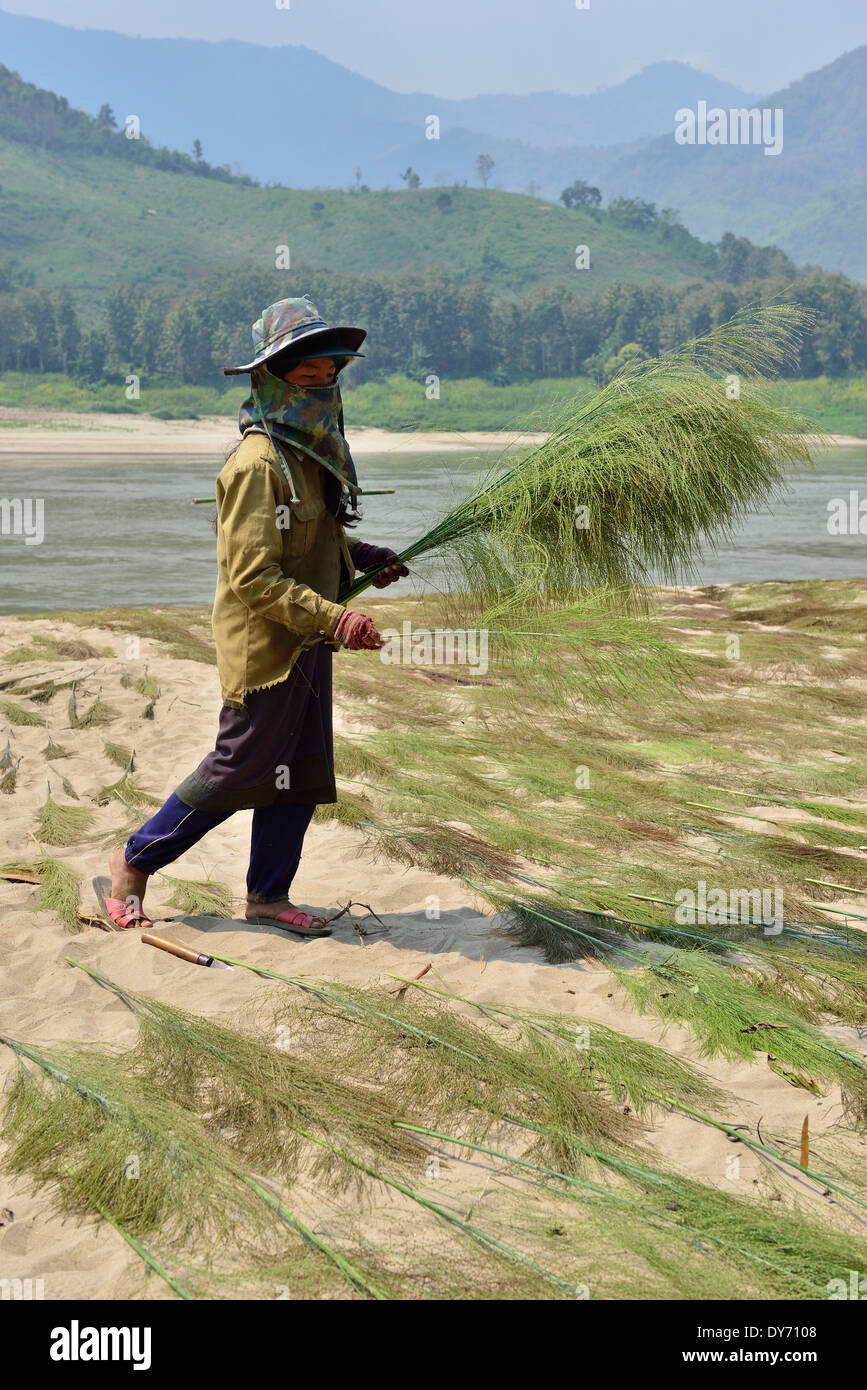 Hmong tribe villagers -on route along the Mekong River banks .Laos - Stock Image