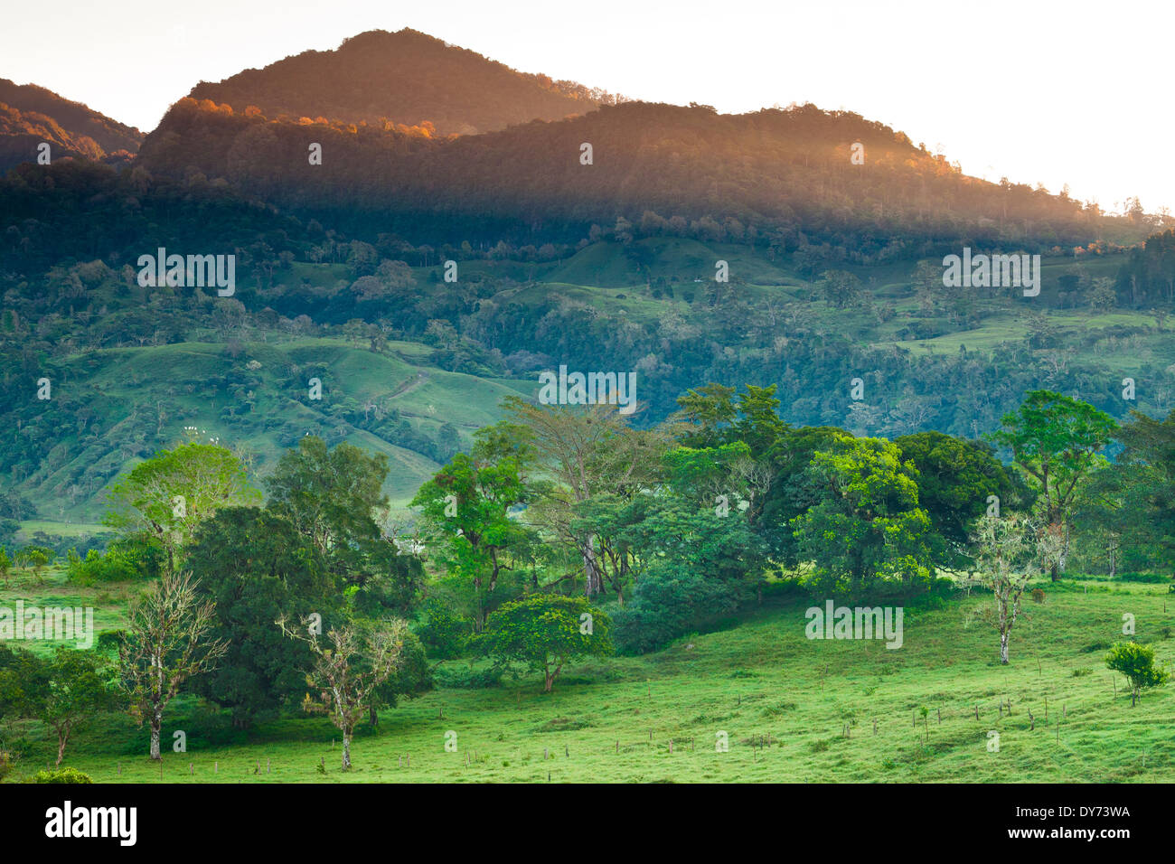 First light on the forested hillsides just outside the Volcan village in the Chiriqui province, Republic of Panama. - Stock Image