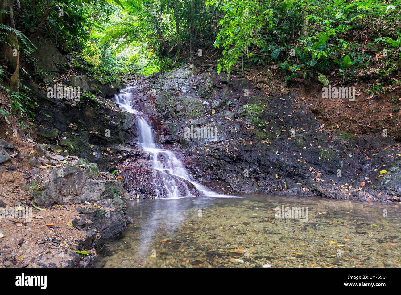 Small waterfall in a dense tropical rainforest near Capurgana, Colombia - Stock Image
