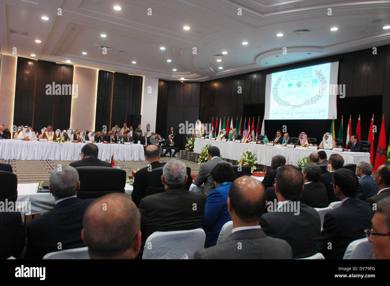 Tunis. 8th Apr, 2014. The opening ceremony of the forum of Arab financial institutions is held in Tunis, Tunisia, Stock Photo