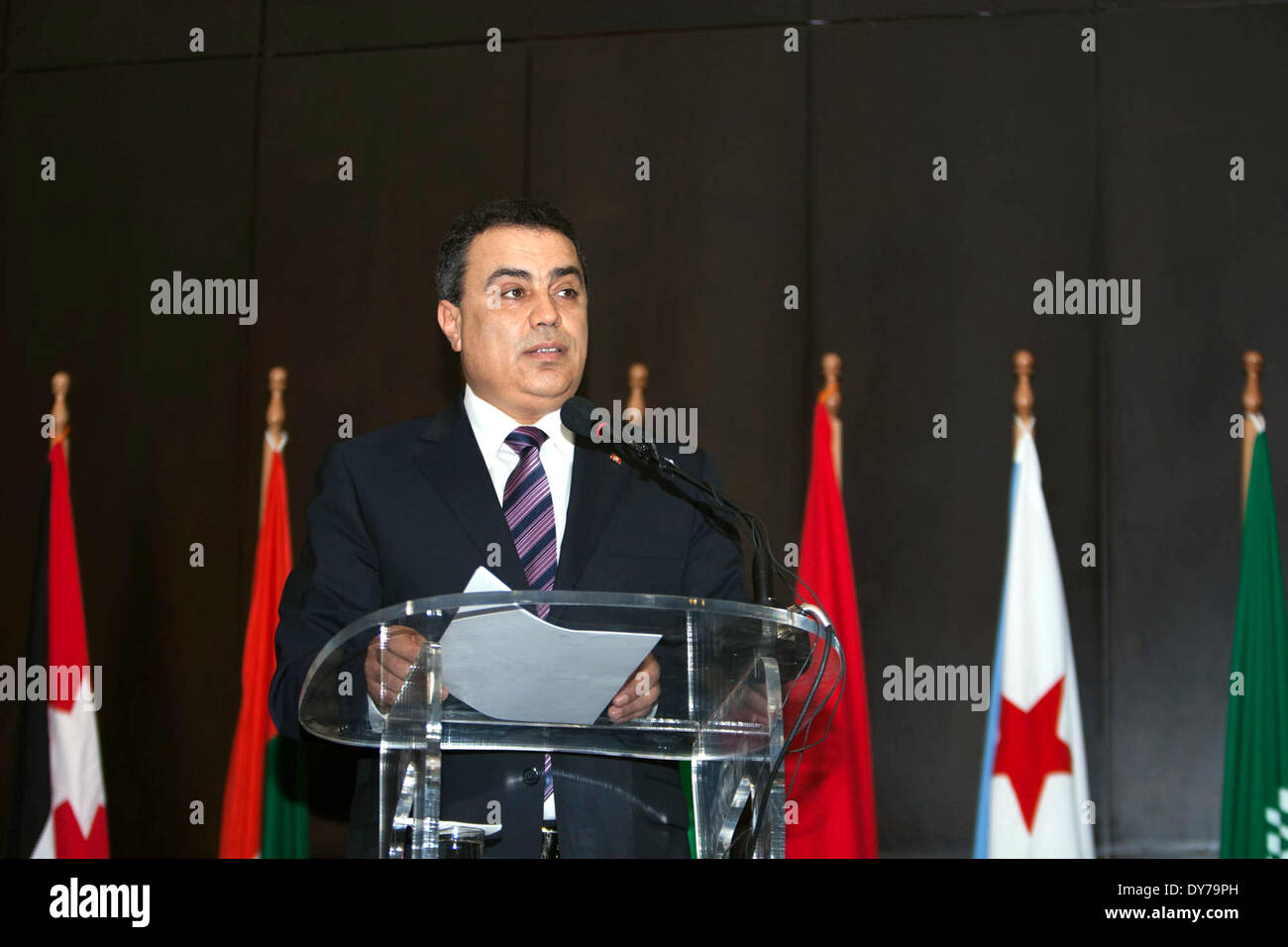 Tunis. 8th Apr, 2014. Tunisia's Prime Minister Mehdi Jomaa speaks during the opening ceremony of the forum of Arab Stock Photo