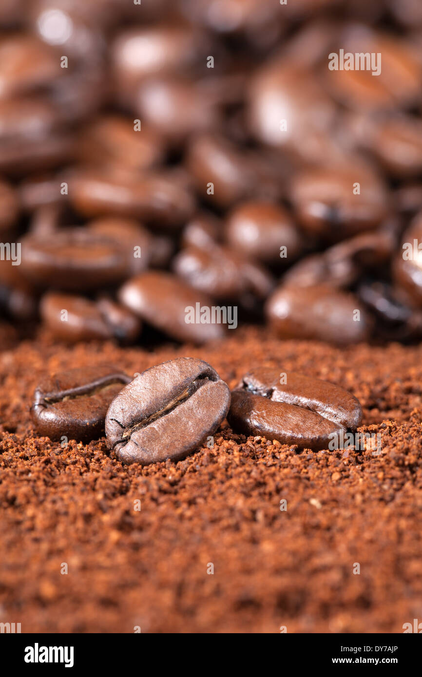 Close up shot of coffee beans on coffee powder with shallow depth of field Stock Photo
