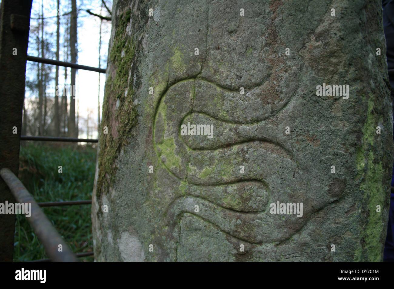 Pictish Serpent Stock Photo