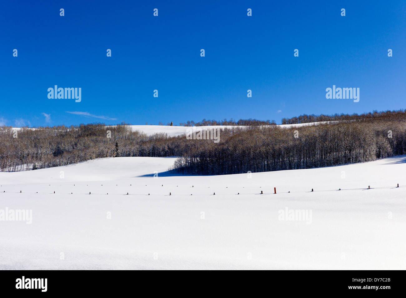 Barren winter landscape, Bridger Wilderness, Wind River Range of mountains, Wyoming, USA - Stock Image