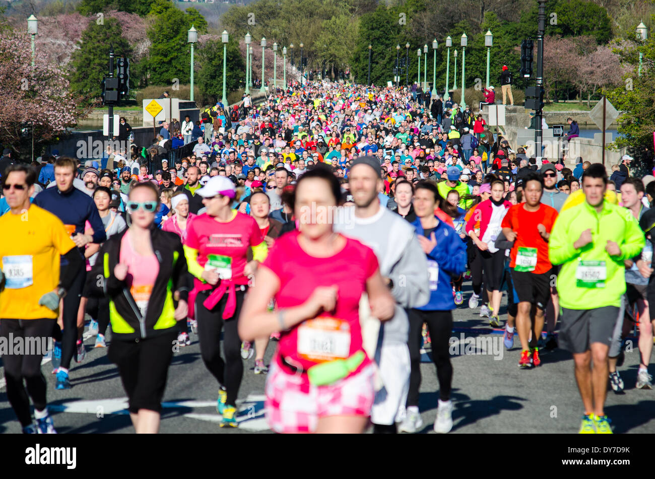 Runners competing in the Washington DC Cherry Blossom 10 Mile Race - Stock Image