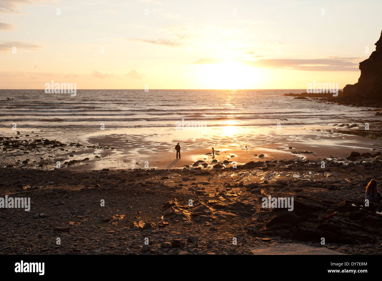 Crackington Haven at Sunset - Stock Image