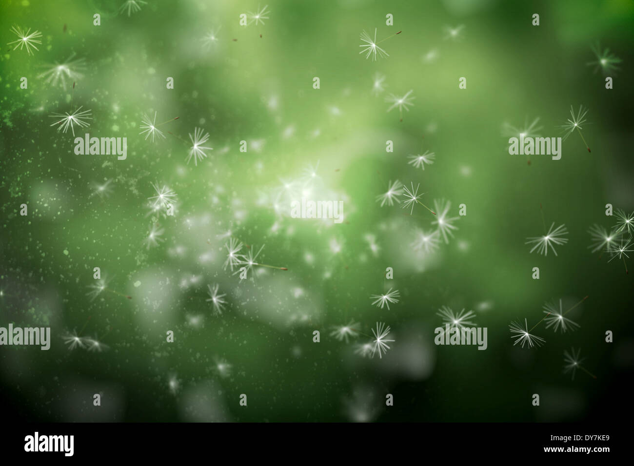 Digitally generated dandelion seeds on green background - Stock Image