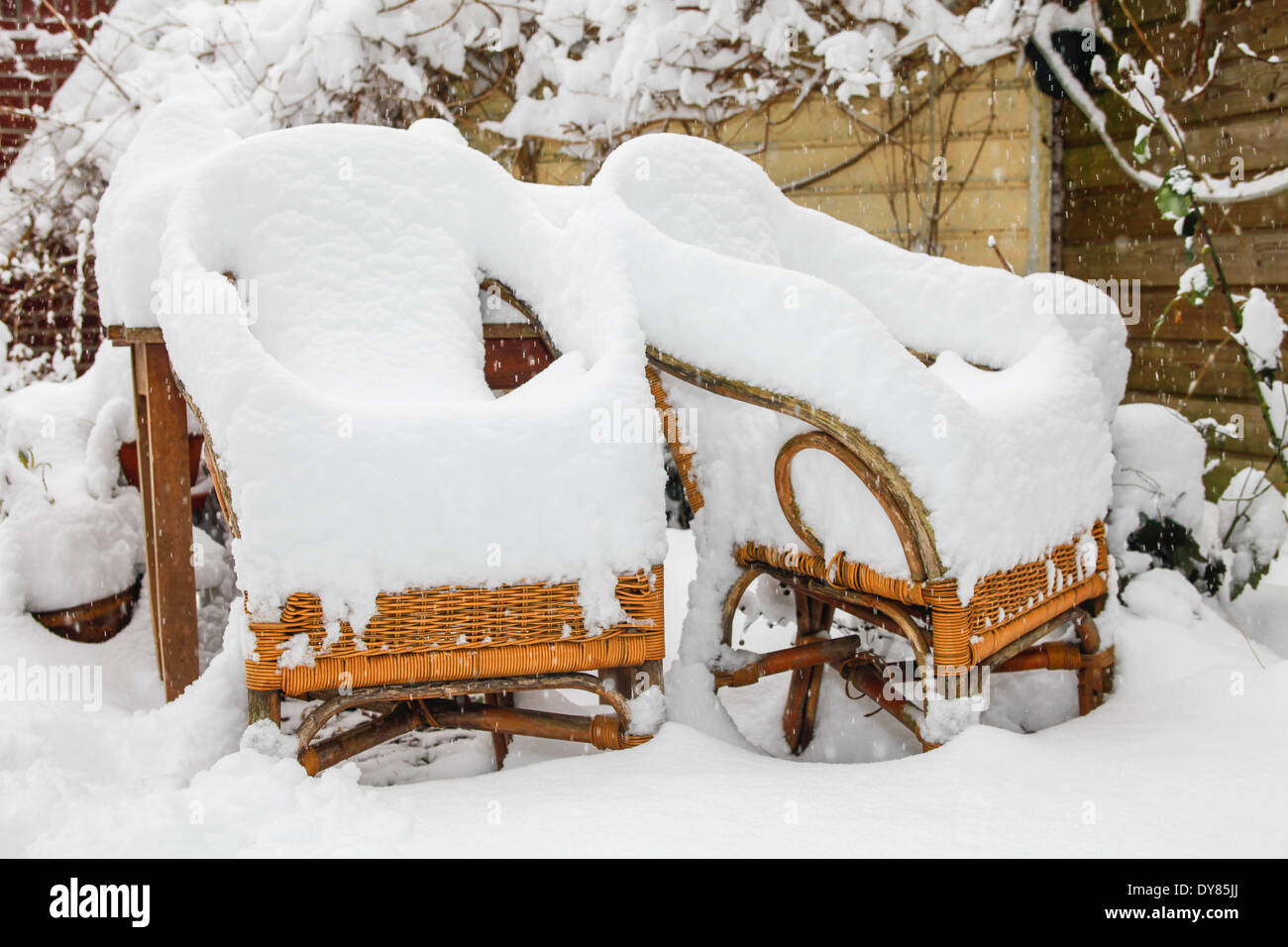 Two Rotan Garden Chairs Heavily Covered With Snow   Stock Image