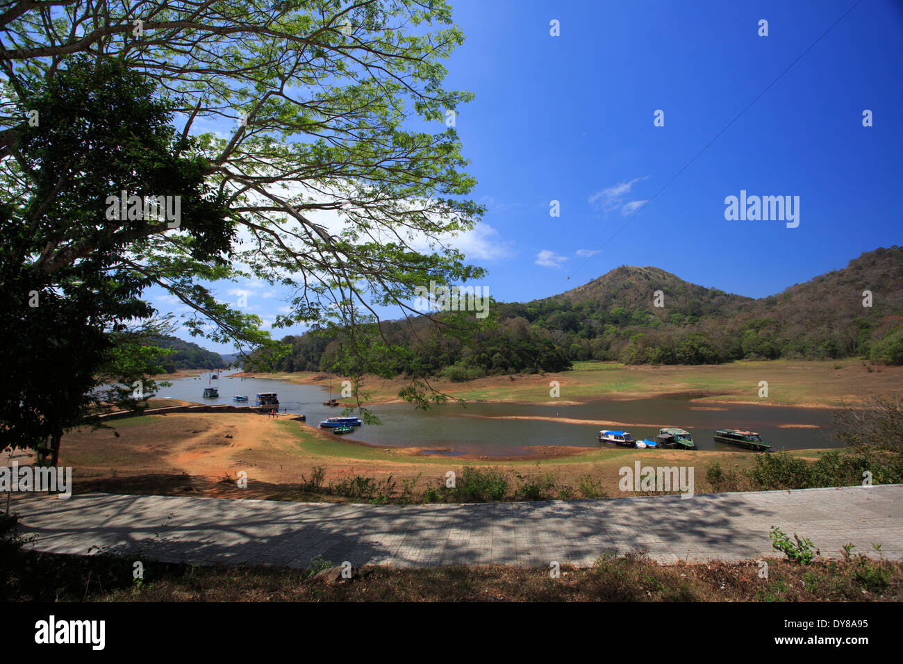 Beautiful Periyar lake Stock Photo
