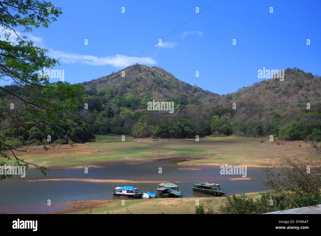 Beautiful Periyar Lake - Kerala (India) - Stock Image