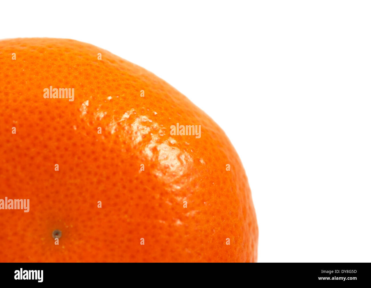 Satsuma oranges white background studio image Stock Photo