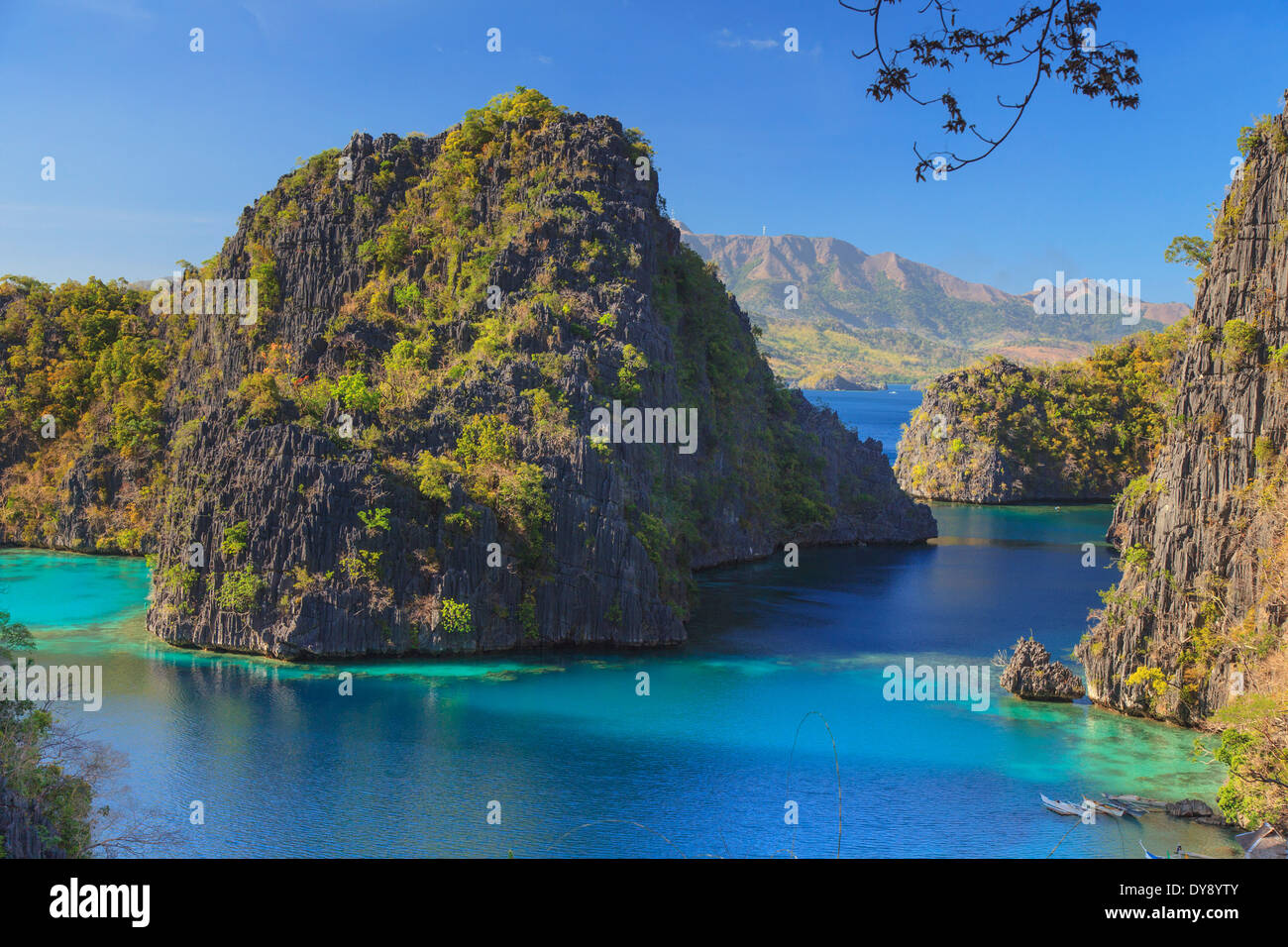 Philippines, Palawan, Coron Island, Kayangan Lake, elevated view from one of the limestone cliffs - Stock Image