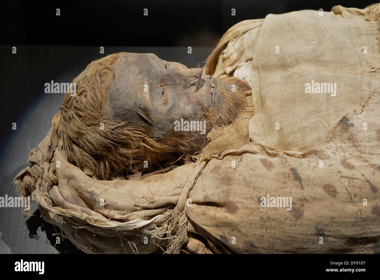USA United States America Texas Houston Museum of Natural Science Museum Natural Science Hall of Ancient Egypt mummy Egypt - Stock Image