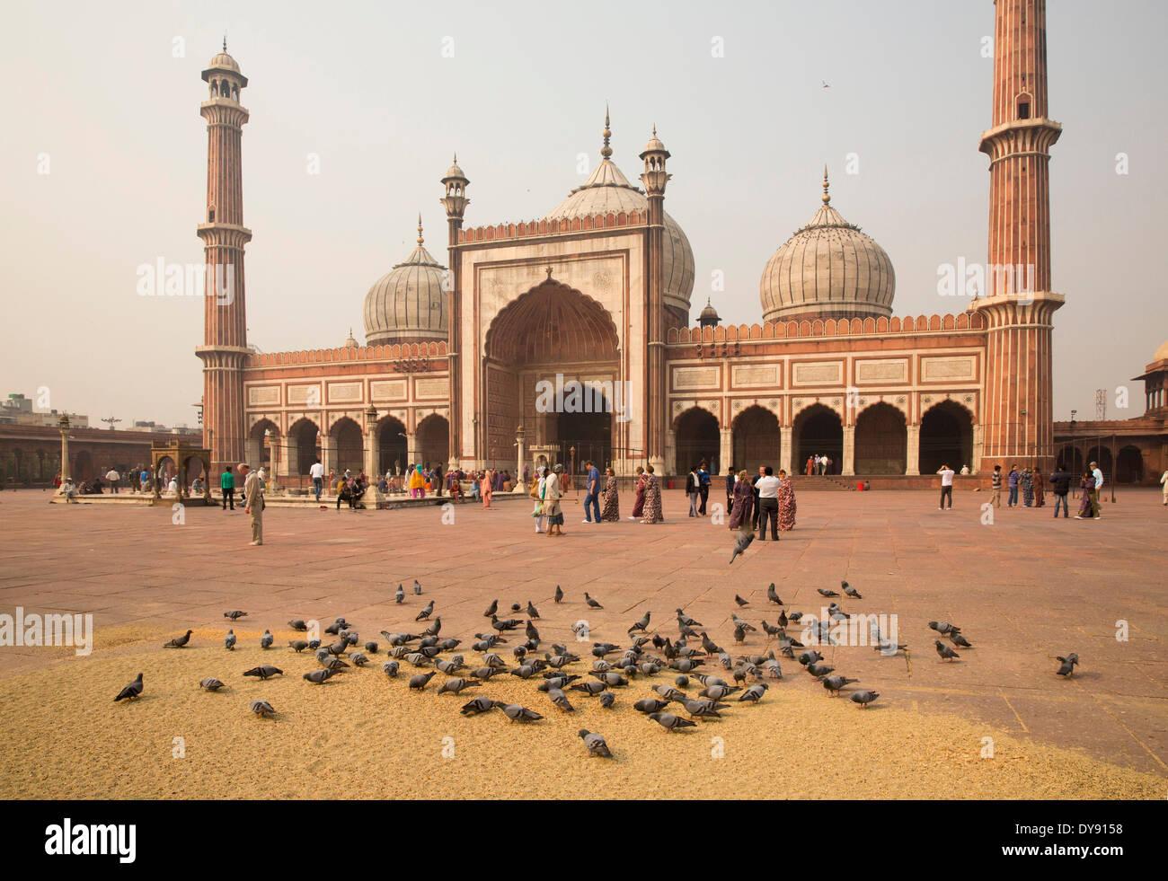 Jama Masjid, mosque, Old Delhi, Delhi, masterpiece, Mogul's architecture, Asia, church, religion, towers, place, pigeons - Stock Image