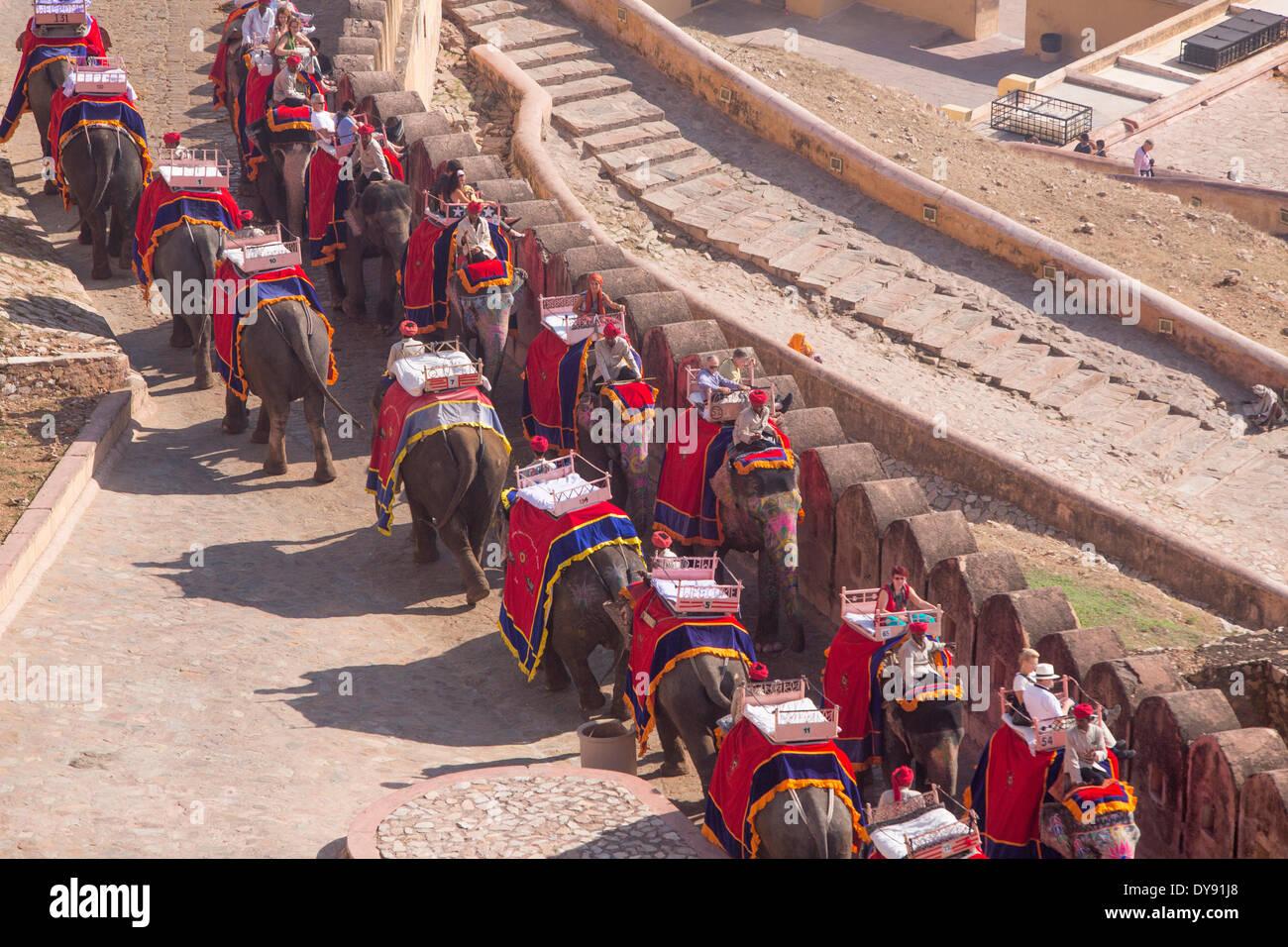 Tourists, ride, fort, Amber, elephant, Asia, India, elephant, Rajasthan, Amber, Jaipur, - Stock Image