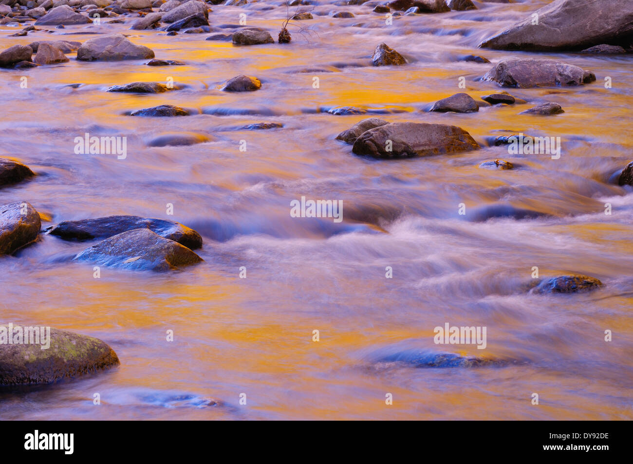 USA, Vermont, New England, Green Mountain National Forest, fall foliage  reflecting in water of brook - Stock Image