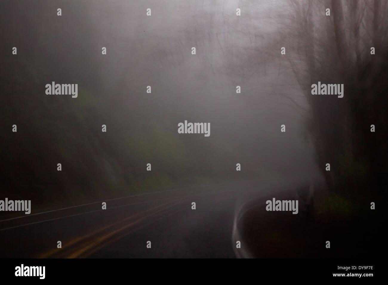 A dark, rainy, foggy road, near Cape Lookout, Oregon Coast, United States  Stock Photo