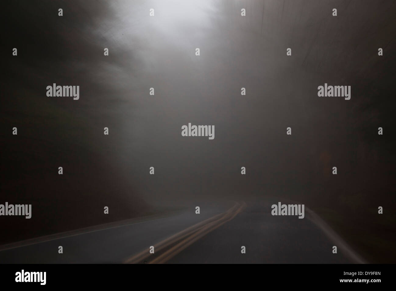 A dark, rainy, foggy road, near Cape Lookout, Oregon Coast, United States  Stock Photo